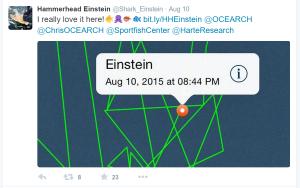Hammerhead Einstein Twitter