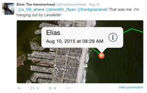 Elias The Hammerhead Twitter